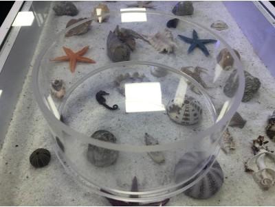 ZeoChem Coral Eye ( Mercan Gözetleme Camı ) 20 Cm