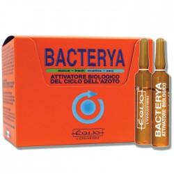 BACTERYA - 6