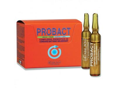 PROBACT - 6